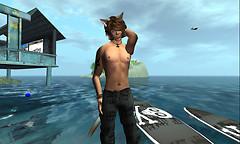Surfin teh GRID.S.A (1)