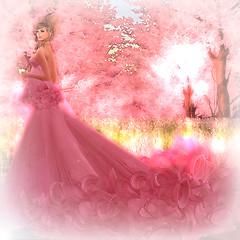 MP Royal Princess at Life is good-002MP Royal Princess at Life is good-002