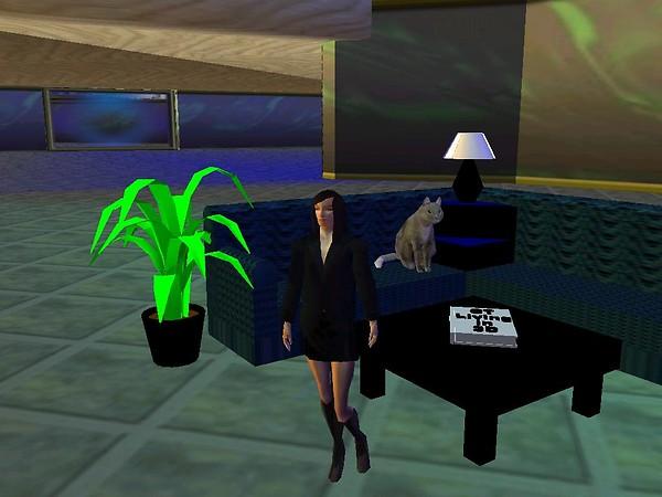 Cybertown Living in 3D