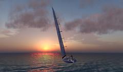 ACA 33 into the Sunset
