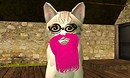 swirly eyed cat with pink beard - Torley Linden