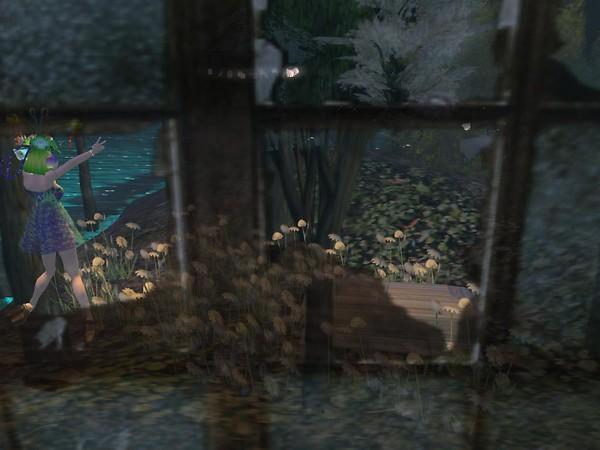 She's outside my window - Ravenelle Zugzwang