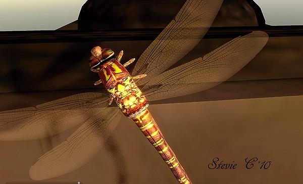 BlueMars Dragonfly....