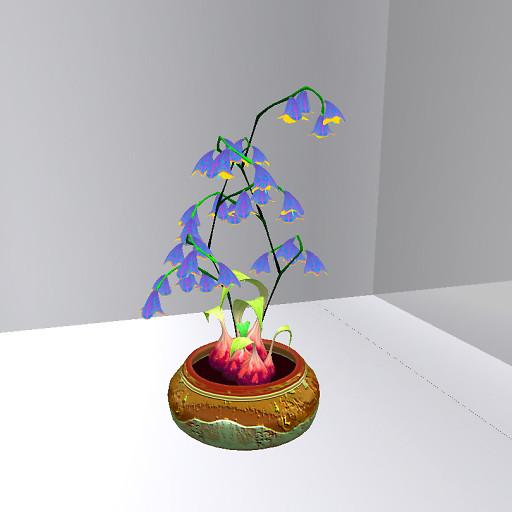 1004 soror flower