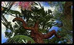 Radiant Bliss Music Tree of Life