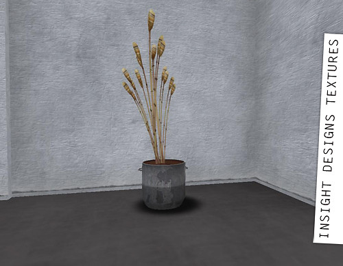 Rustic textures and plant by D-LAB