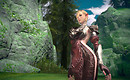 Tera Online - The High Elf