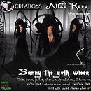 Banny the Goth wicca vendor