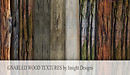 gnarled wood textures