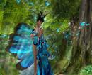 Love...Butterfly