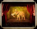 Le Cirque_4