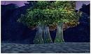 3 Trees