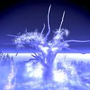 Heaven Lake tree