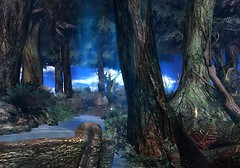 Bentham Forest_004