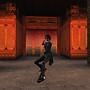 Kung fu-1