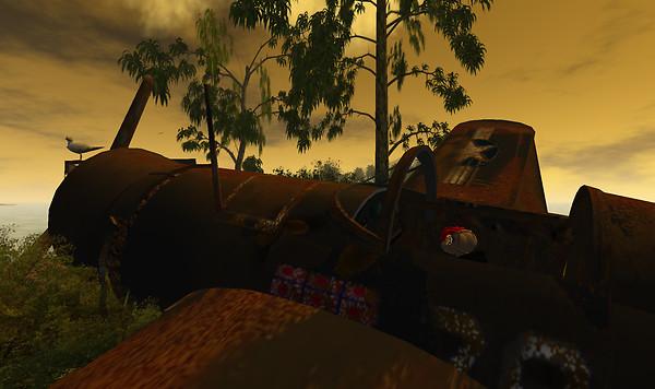 Meerkat explores the Corsair Wreck at Sundown