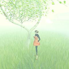 under the sannomiya tree