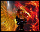 Phoenix Tribute