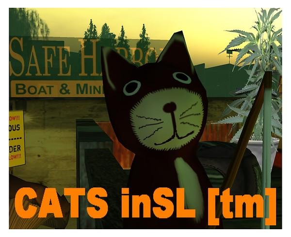 catsinsl