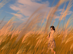 with a autumn wind 2