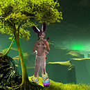 bunny in the green