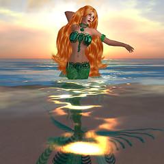 green mer 1