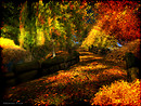 Autumn in Embryo