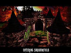 Exploring Shadowfield