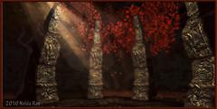 Forest Secrets