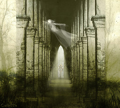 ***The Gate***
