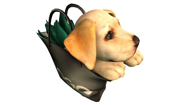 cute doggy bag containing a skin - Torley Linden