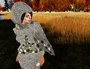 Late fall wool6