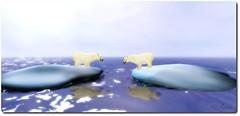 The awakening of polar bears