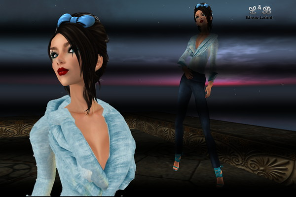 Bloggers Challenge 2 - BLUE_001b_cr