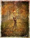 Autumn at Drobak