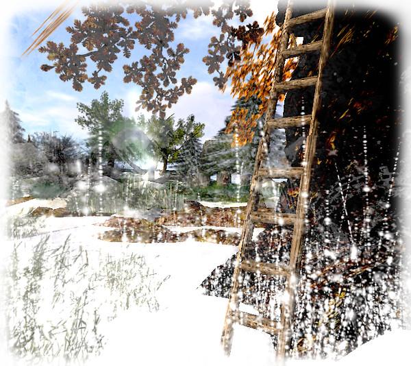 Snapshot_007 snowview