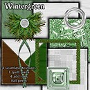 Wintergreen  Free Texture Pack