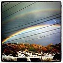 二重の虹左