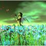Butterflies_003b