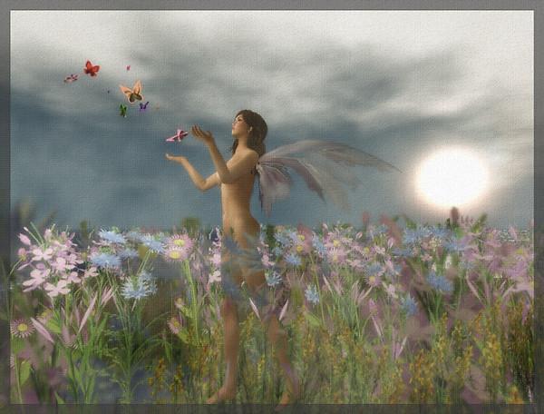 Butterflies_002c