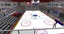 Live Hockey - AAngel Braveheart