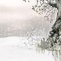 winter stock image 4