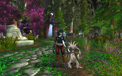 My Worgen & New Companion Pet