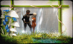 Memories of The Waterfall