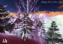 Capodanno 2011 - New Year 2011