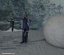 Snowy IDIA