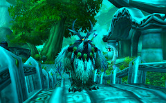 Druid - Moonkin Form