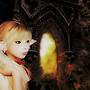 a Dark Fairies Dream