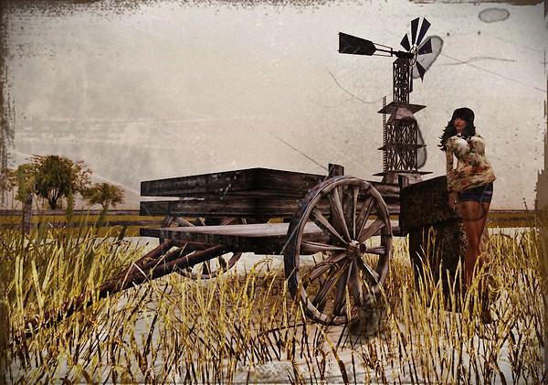 Wagon Rolling