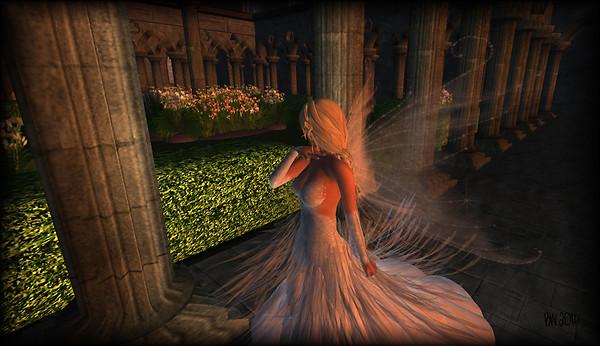 Wandering in the garden